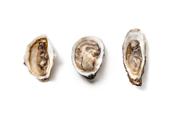 pearl oyster app
